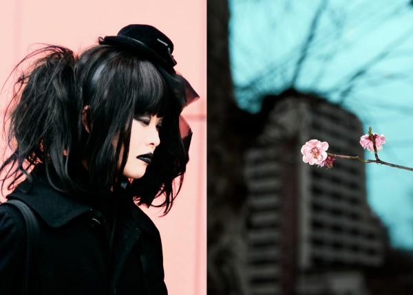 Japan / Vagabond